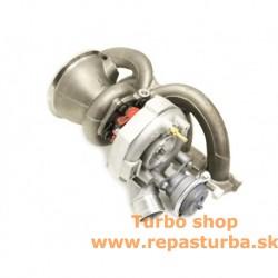 Audi TT RS 2.5 TFSI (8J) Turbo Od 06/2009